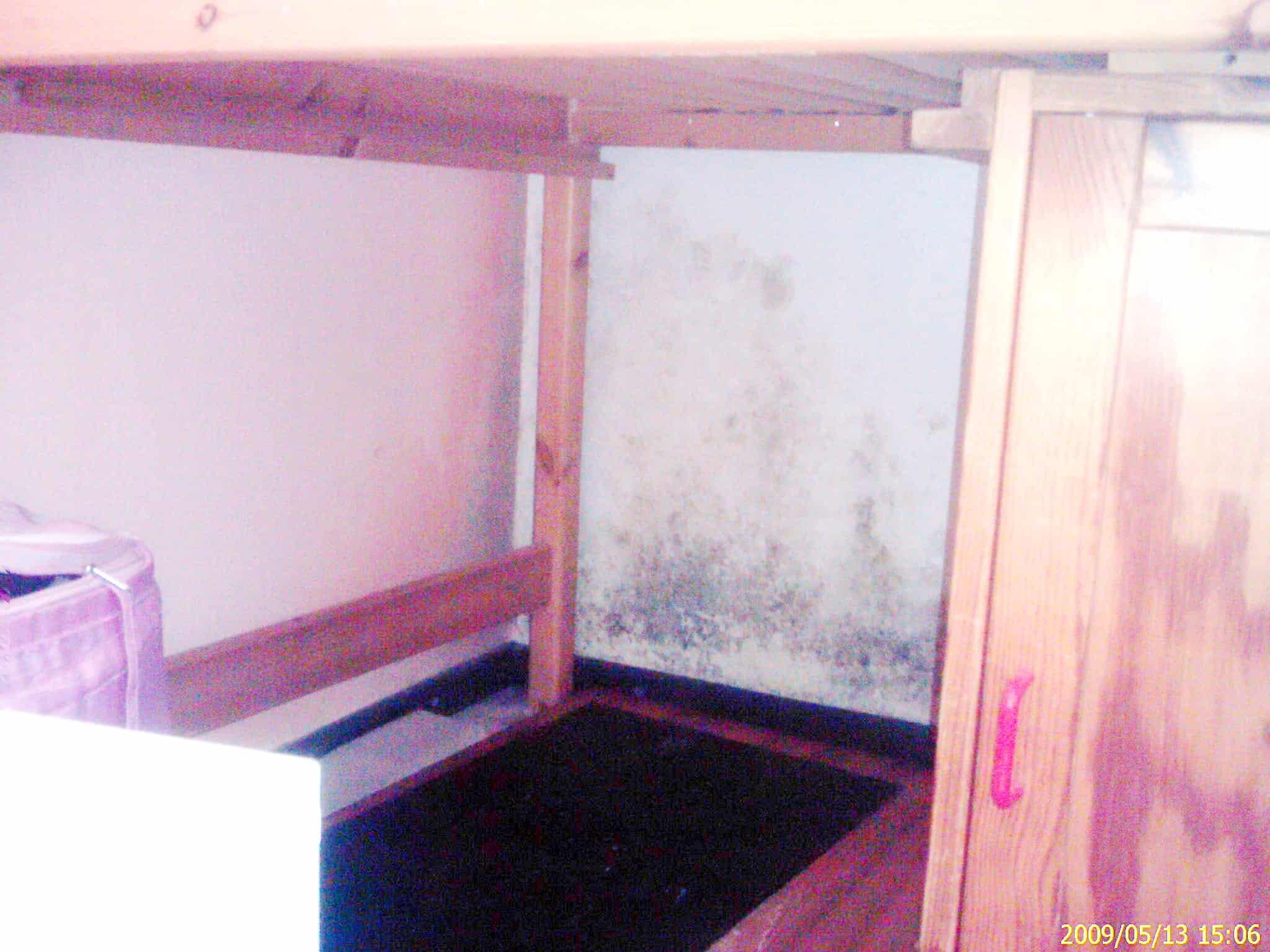 Schimmel Wohnung Entfernen schimmel wohnung überall schimmelbefall baugutachter