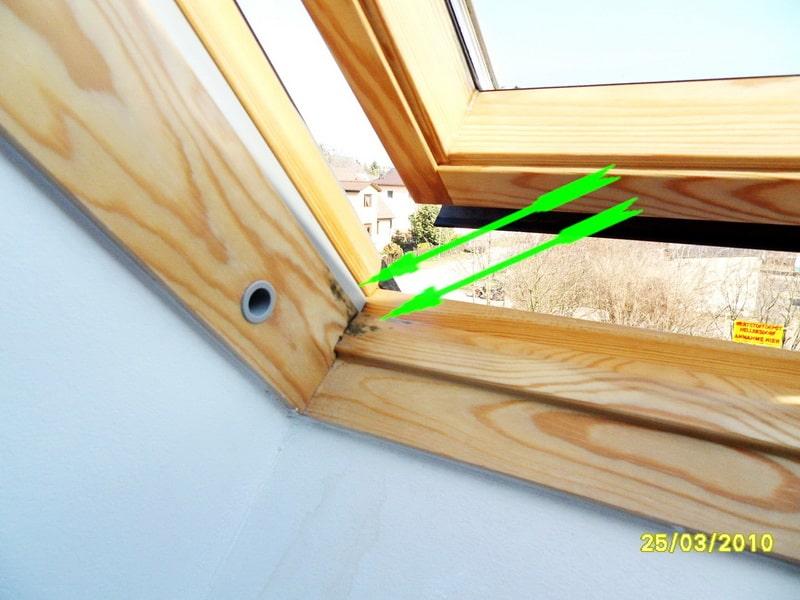 schwarzer Schimmel Dachfenster - Schimmelpilz Schimmelgutachter, Schwitzwasser, Kondensat