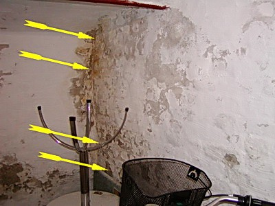 Hauskaufberatung undichter nasser Keller