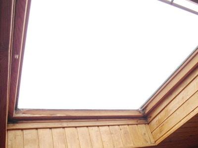 Schimmel am Dachfenster
