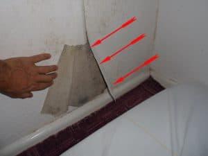schädliche Schimmelpilze von Wand entfernen