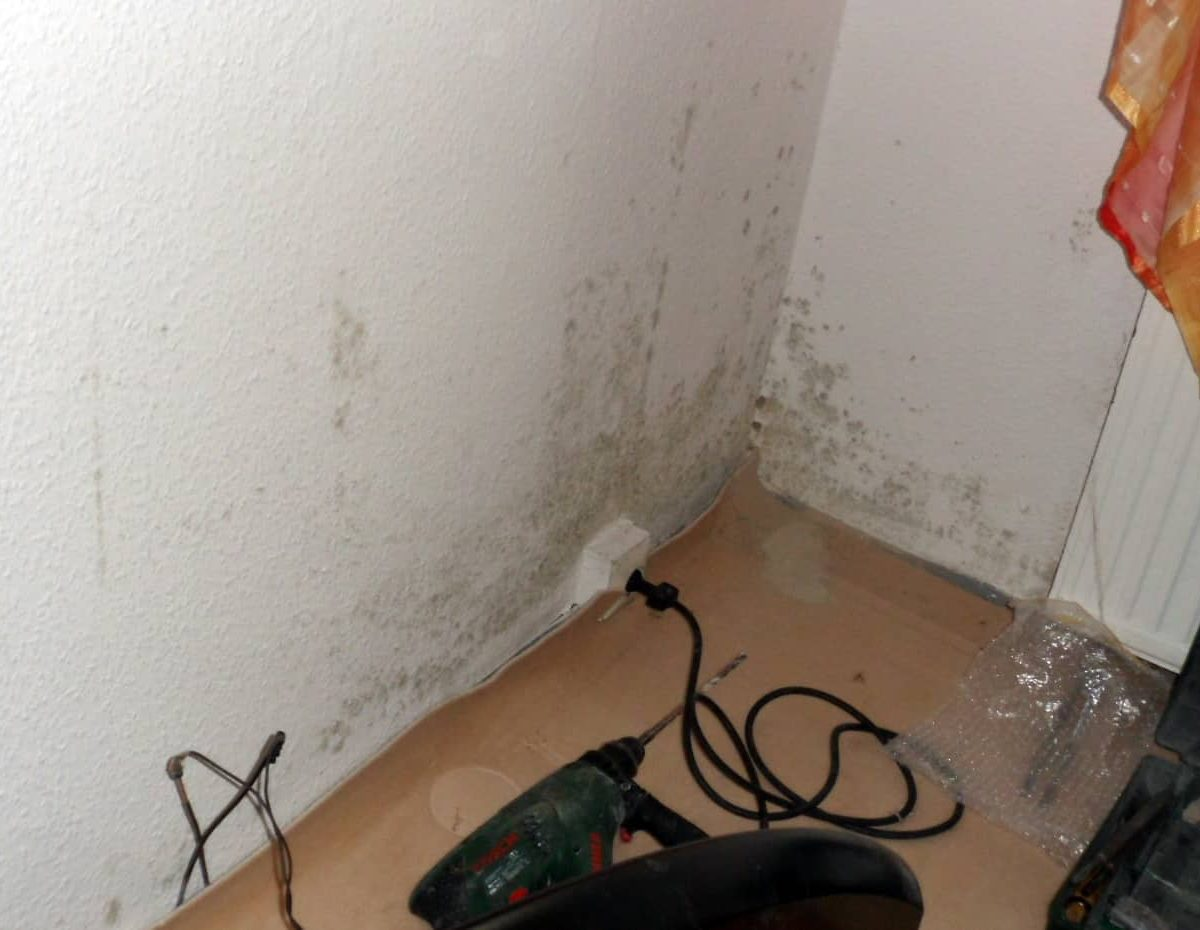 gefährlicher Schimmelpilz im Schlafzimmer Ecke unten entfernen ...