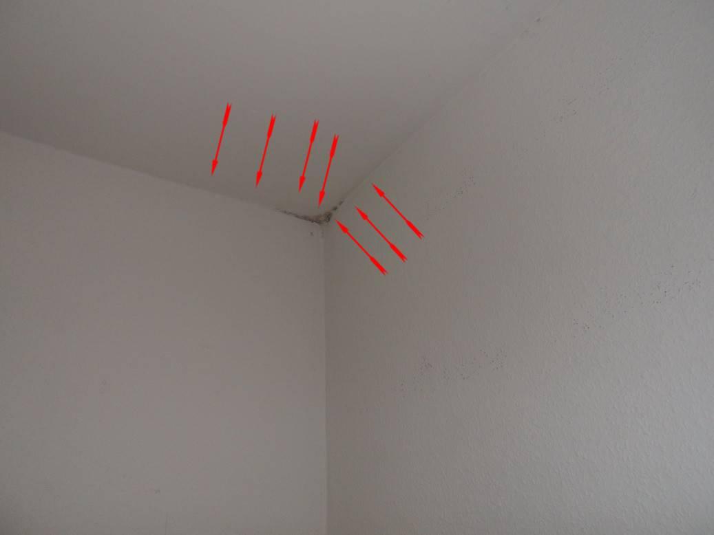Wonderful Schlafzimmer Decke Schimmel #14: Schädlicher Schimmel Ecke Oben