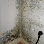 Keller abdichten Haus schaetzen