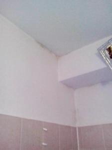 Schimmel im Dachgeschoss Schimmelpilz in Dachwohnung - Baugutachten ...