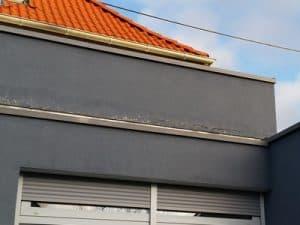 Balkon Schimmel - bodentiefe Fenster Schimmelpilz-französische Fenster laufen an, Aufstandselement