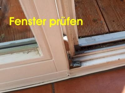 Hauskaufberatung Tipps Fenster klemmen Hauskaufhilfe Hausinspektion Gutachter Hauskaufen